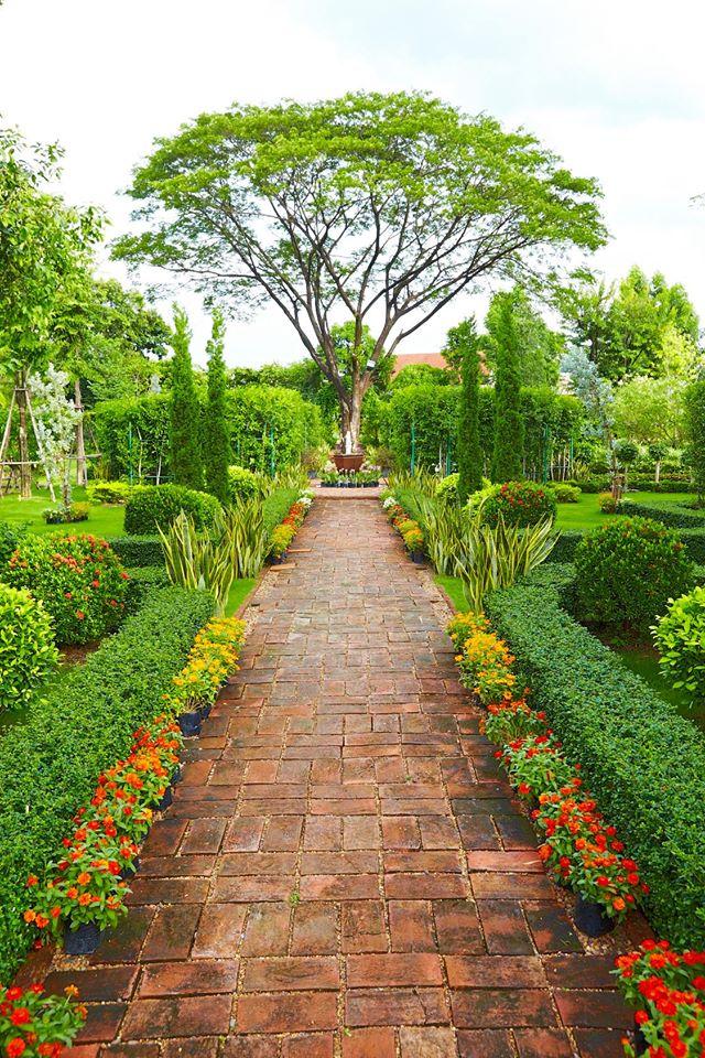 แต่งงานในสวน